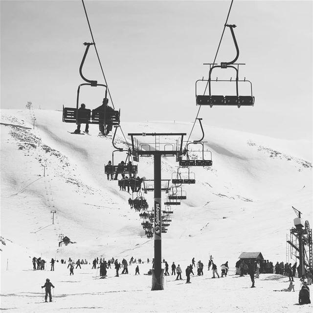"""Adrenaline poles"" mzaarskiresort livelovemzaar livelovebeirut ... (Mzaar Ski Resort Kfardebian)"