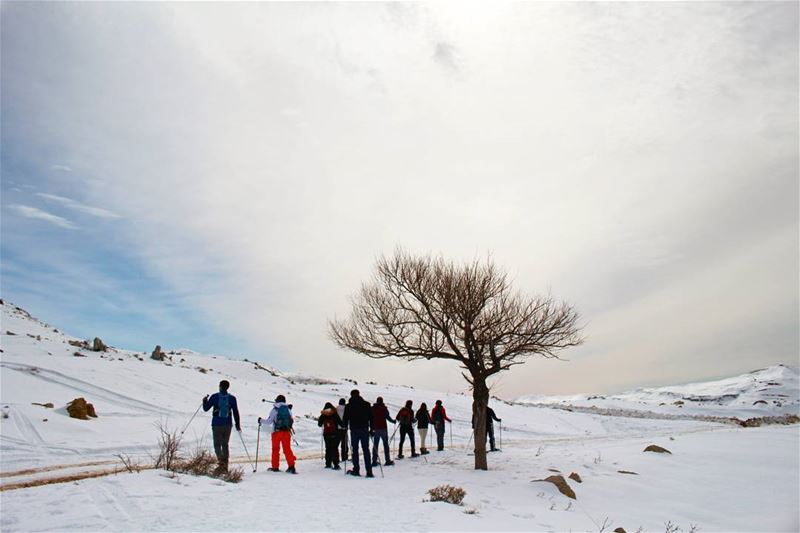 Beyond the Horizon! snow snowshoeing hike livelovelebanon ... (Le Plateau de Bakish)