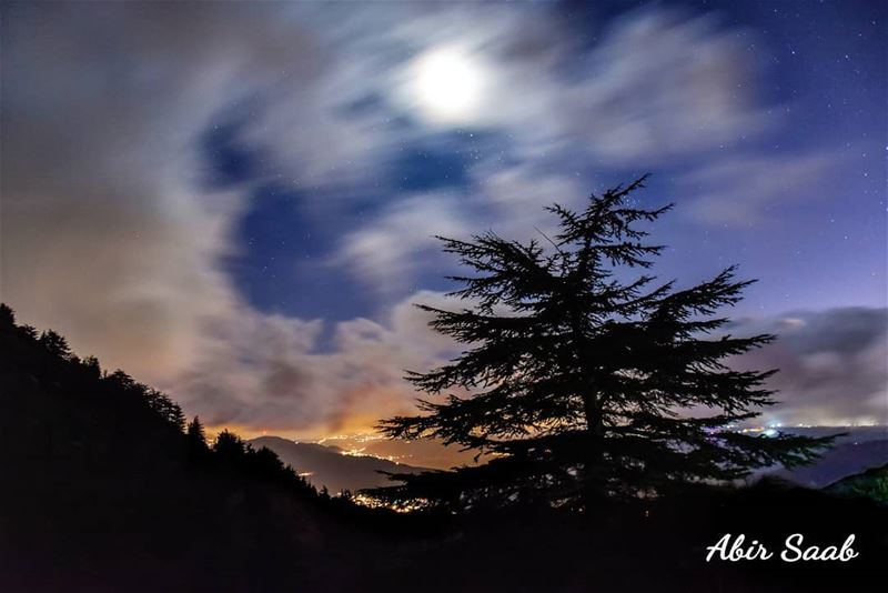 The sky is an infinite movie to me.. Lebanon liban لبنان elchouf ... (Al Shouf Cedar Nature Reserve)