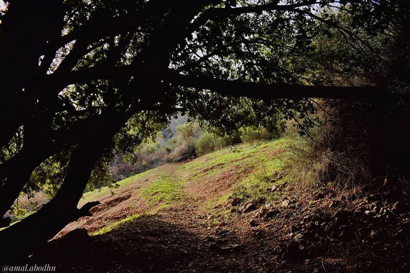 ان عشت في رضى من الداخل،،، سترى كل جمال العالم في الخارج 👌 lebanon ... (`Ammiq, Béqaa, Lebanon)