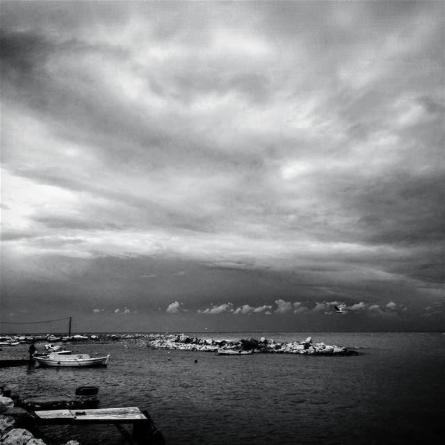 Todavía estamos en invierno - ichalhoub in Tripoli north Lebanon...