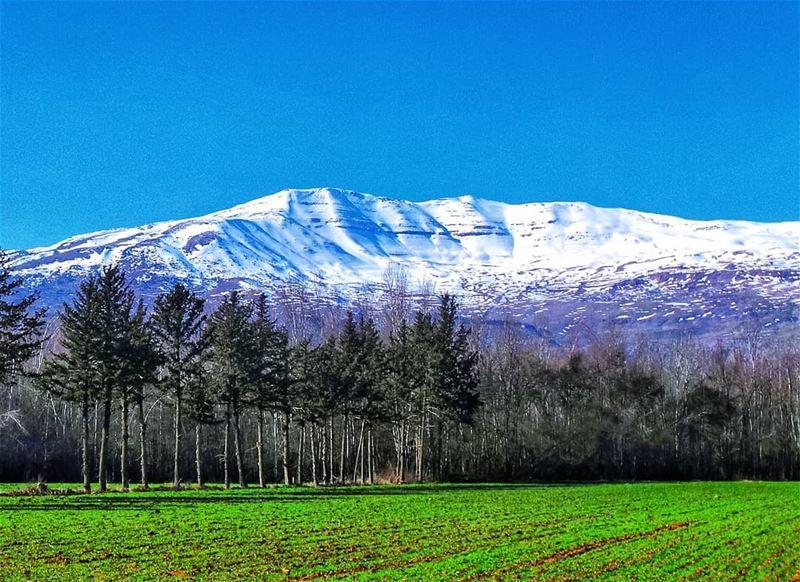 Mount Sannine as seen from the bekaa landscape landscapephotography ... (Taanayel- Bekaa)