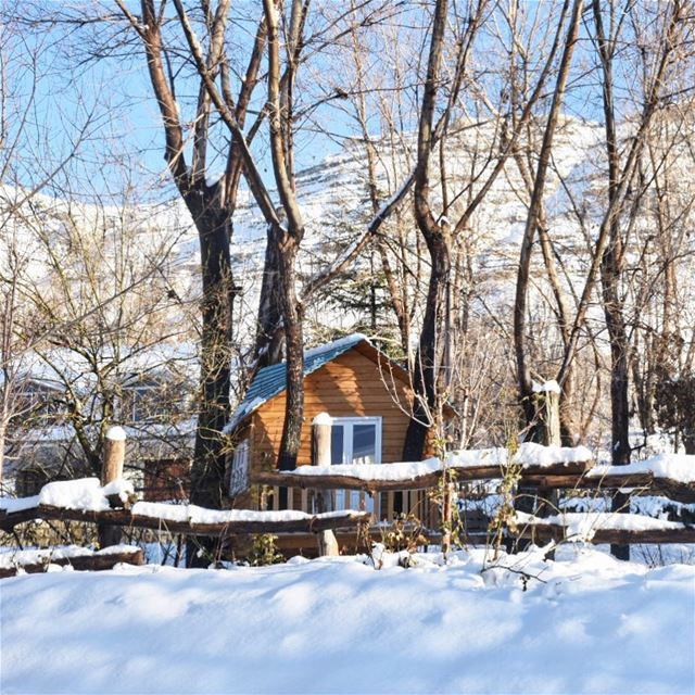 Snowy mornings be like ☝🏻••••••••••••••••••••••••••• Lebanon ... (El Laqloûq, Mont-Liban, Lebanon)