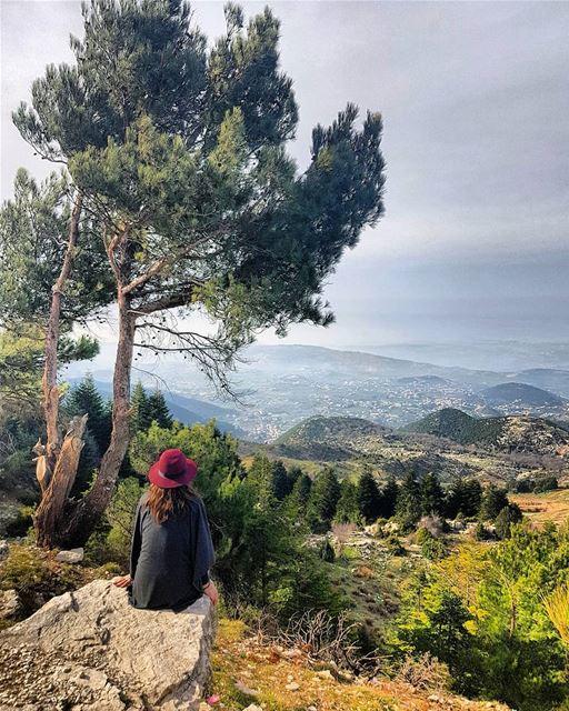 Just gazing at this beautiful view of Akkar from the Qammoua forest! Did... (El Qammoûaa)