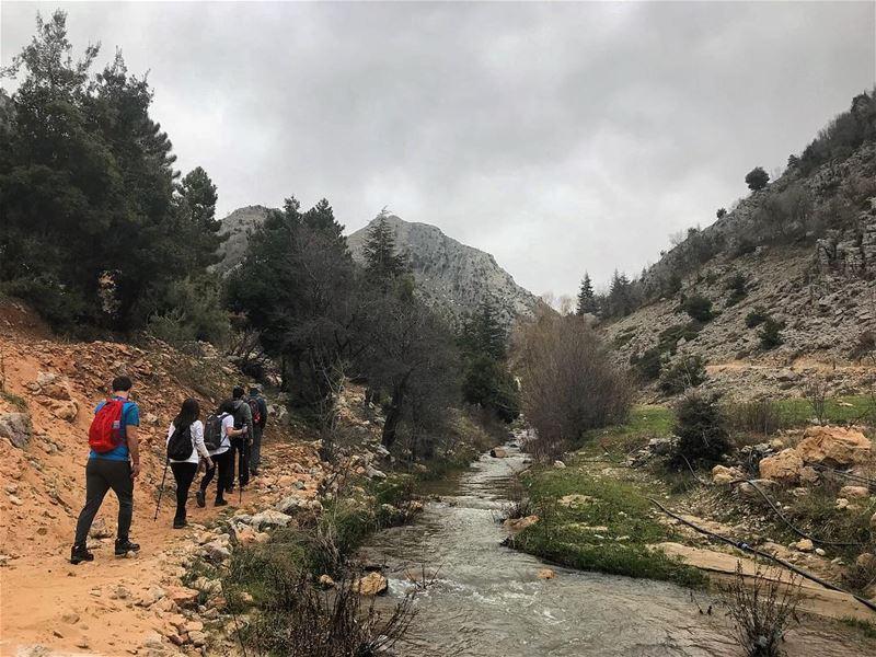 Hiking 🚶🏻♂️🌲🏔 (ehmej ;jbeil)