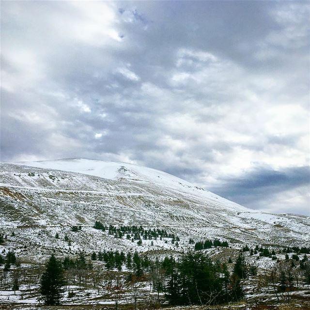 When you reach the mountain top, keep climbing .. lebanon arz cedars ... (Cedars of God)