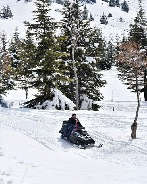 لحظة سعادة lebanon livelovelebanon beirut livelovebeirut snow ... (Cedars of God)