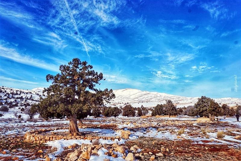 Winter vibes❄Photo credits to @ladybikerhd winter  wintervibes❄️ ... (El Hermel, Béqaa, Lebanon)