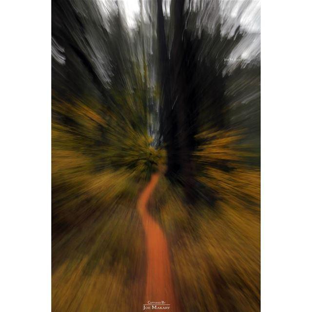 imagination is the true magic carpet ehden ehdenreserve ehdenforest ...