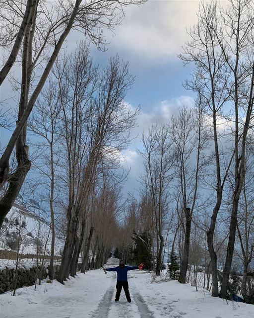 discover the beauty of winter... winterhike snow ptk_sky ig_lebanon ...