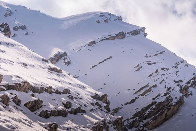 Mountains of Tannourine ... (Jord Tannoûrîne)