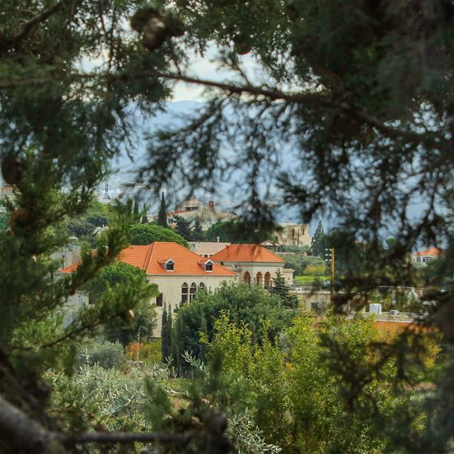 Embraced 🌿🌳🏘🌳🌿... lebanon alkoura btaaboura lebanesevillages ... (Btaaboûrra, Liban-Nord, Lebanon)