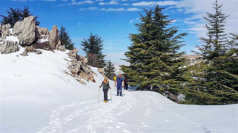 Rise Up & Attack the day with Enthusiasm. .. snowshoeingadventures 🎿... (Arz el Bâroûk)