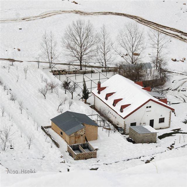 ☃️ Never Stop Exploring ☃️... Hseiki BeirutSouksCompetition snow ... (Sannin, Mont-Liban, Lebanon)