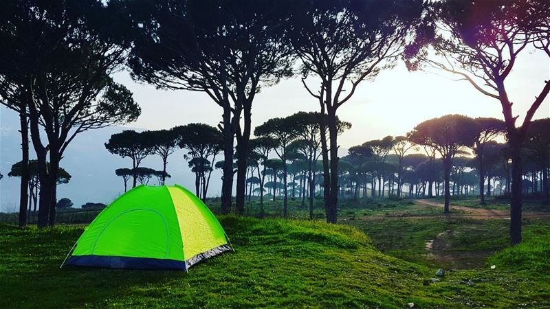 Home is where you pitch your tent🏕 livelovebeirut wearelebanon ... (Ra'S Al Matn, Mont-Liban, Lebanon)