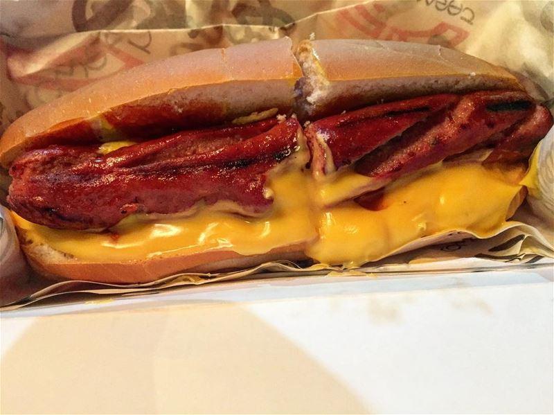 midnight crime hotdog lebanon ... (Comsi Comsaj)