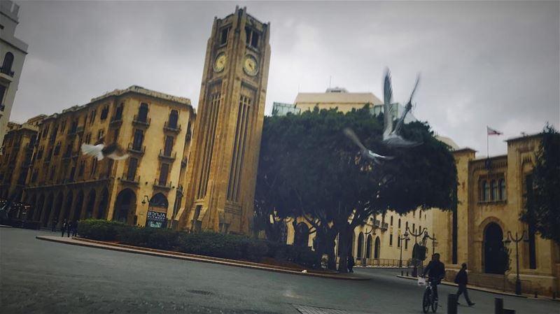 بيروت، يا عصفورة الشرق beirut beyrouth lebanon liban ... (Beirut, Lebanon)
