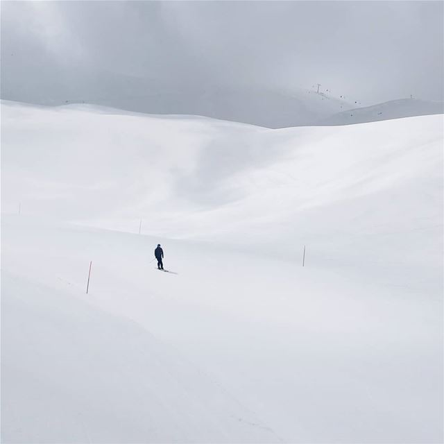 Fifty shades of grey... fiftyshadesofgrey mzaar skileb ... (Mzaar Ski Resort Kfardebian)