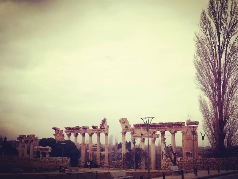 castles baalbeck old history photography lebanonphotography... (Ba`labakk, Lebanon)