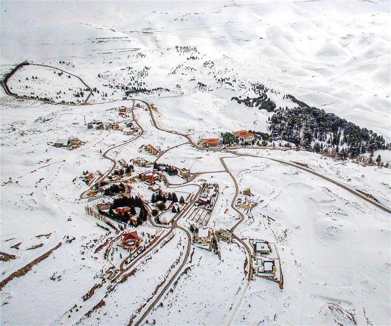 God's Gift 🌲.📍Arz, Lebanon | 2018..━ ━ ━ ━ ━ ━ ━ ━ ━ ━ ━ ━ ━ ━ ━ ━ ━... (El Arz, Liban-Nord, Lebanon)