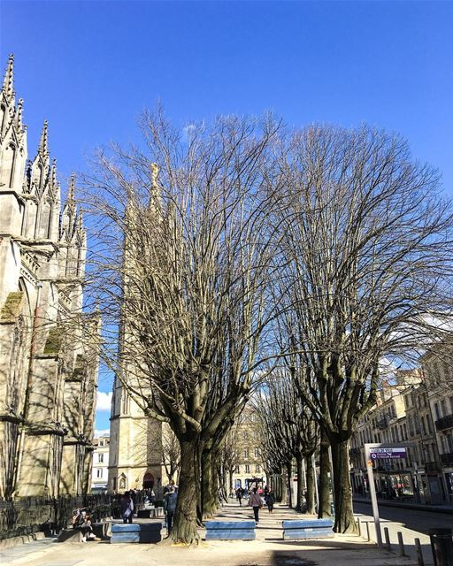 This city has something special Bordeaux ... (Cathédrale Saint-André de Bordeaux)