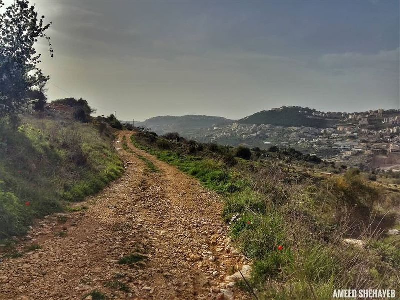 """""""Do not go where the path may lead, go instead where there is no path and... (Aley District)"""
