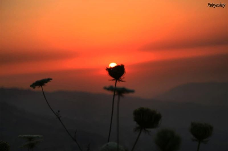 Here comes the sun, and I say it s all right...... (Chbânîyé, Mont-Liban, Lebanon)
