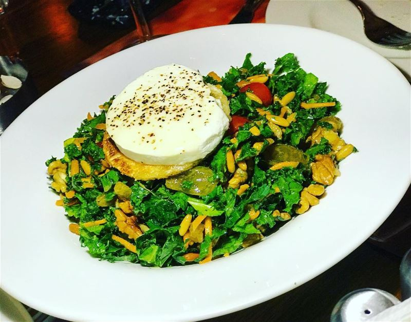 best lent salad , tasty . fresh , and good all the way - kale salad @provin (Provincial Jbeil)