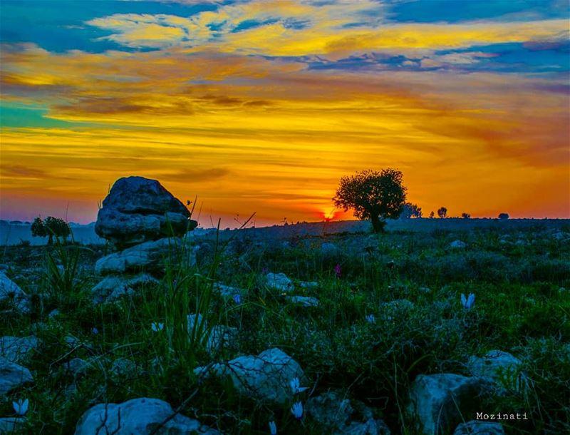 Serenity.. 😍 =========================== sunsetporn livelovebeirut ... (Rumin, Al Janub, Lebanon)
