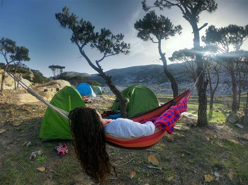 Credit to @moustapha_zay -  Camping life 🏕⛰.......... lebanon...