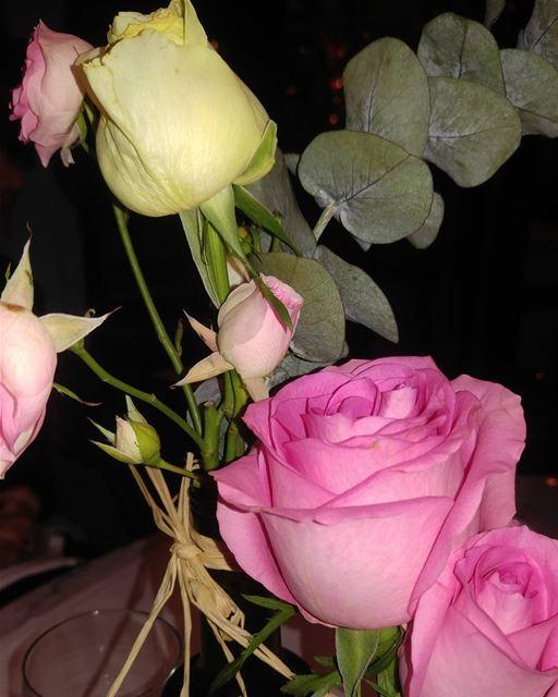 Say it with roses goodmorningpost bonjour livelove life enjoylife ...