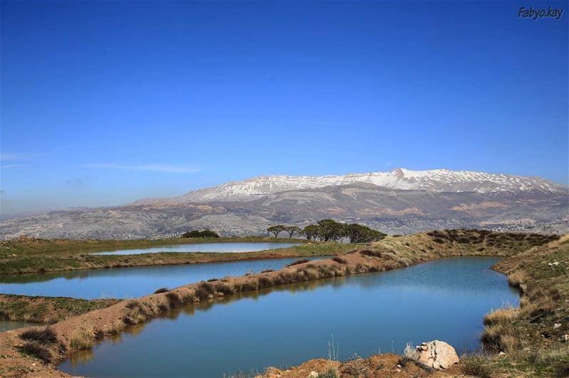 The beauty of nature... From Falougha Lebanon ... (Falougha, Mont-Liban, Lebanon)