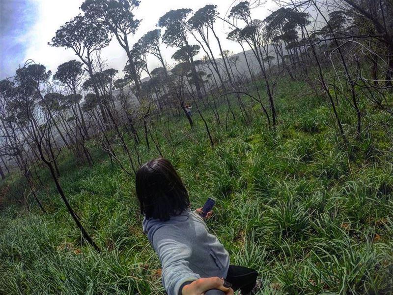 🧝🏾♀️•••••• gopro goprohero4 yallagopro intothewoods wildlife...