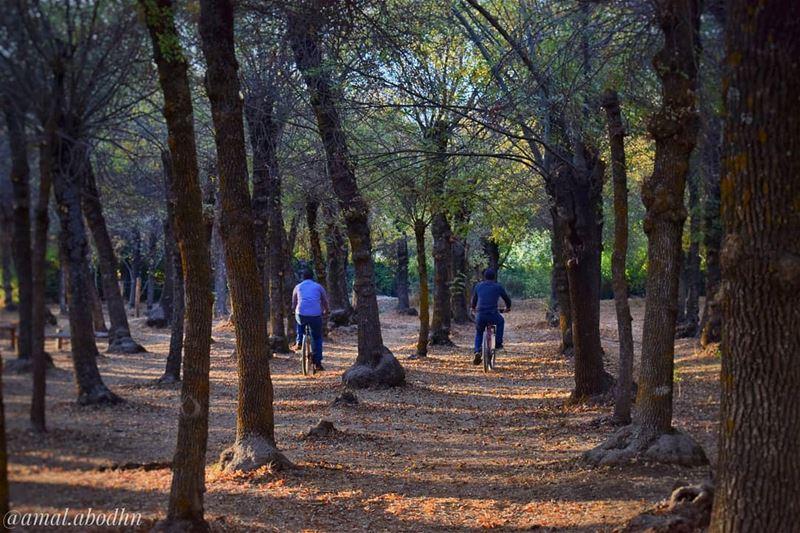 الصداقة ليست شيئاً كبيراً , انما ملايين الأشياء الصغيرة... 👌 ........ (Deïr Taanâyel, Béqaa, Lebanon)