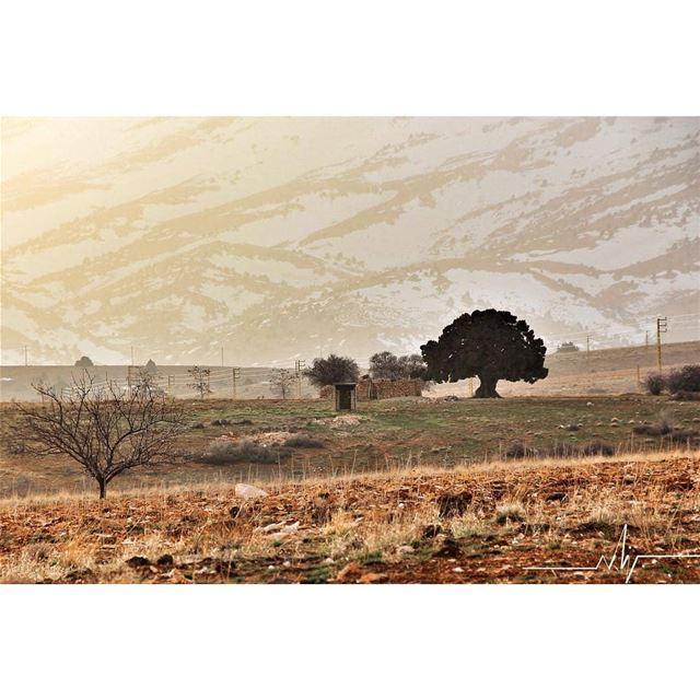 Amazing view by @bsn_lb hermel hermel_city jord_elhermel bekaa ... (El Hermel, Béqaa, Lebanon)