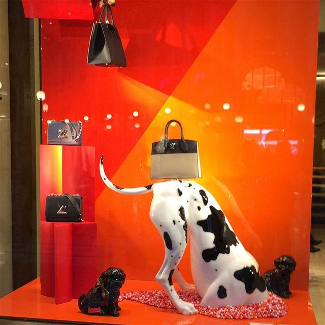 Beautiful display in MilanDailySketchLook 257 shopping italian ... (Milan, Italy)