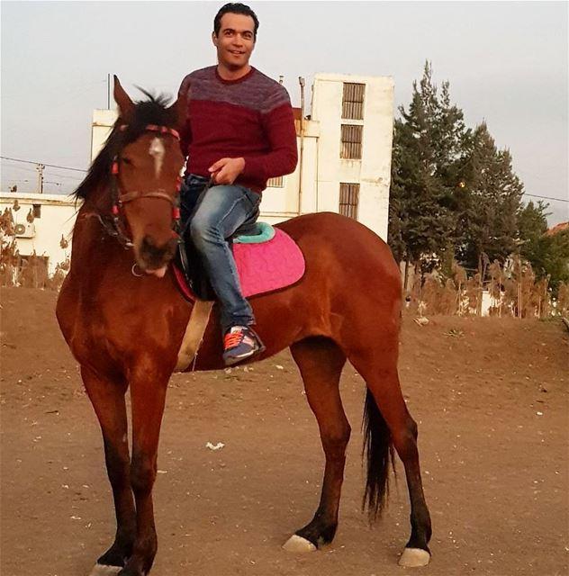 Новый вид спорт, кажется я к нему Привязываюсь 🐎 ливан лошадь спорт...