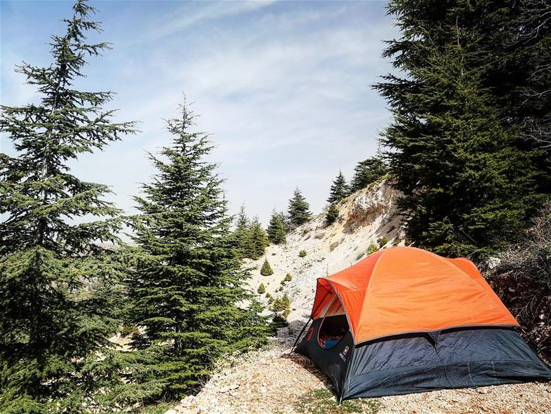 Camping is dangerous, How about routine ? camping cedars tent outdoors... (Cedars Ground Campsite)