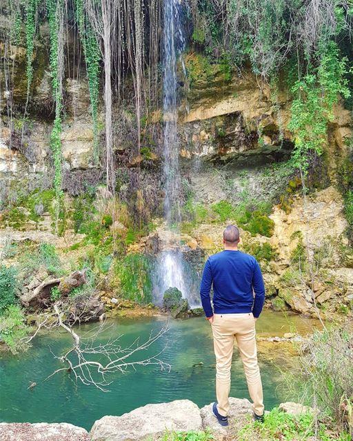 A little piece of heaven ... 🌳💚 (El-Mukhtarah, Mont-Liban, Lebanon)