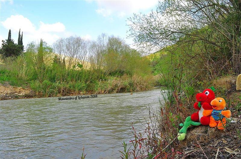 Ness, Griff and Mini-e chilling on the Litani river deep inland between... (LITANIA-قاقعية الجسر)