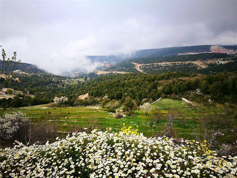 waiting for spring springtime springfever clouds flowerstagram ... (Annâya, Mont-Liban, Lebanon)