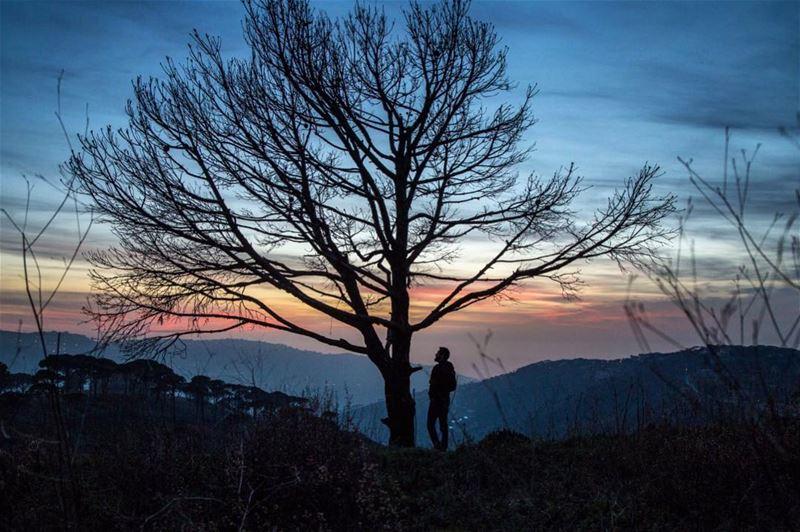 Silhouettes ..... nature colors surreal landscape mountains ...