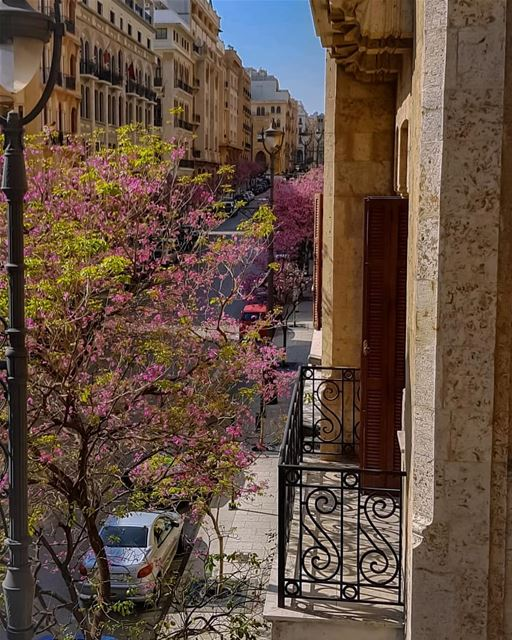 Throw away all negative vibes from your balcony..🍃🌸🍃.. hello spring... (Downtown Beirut)