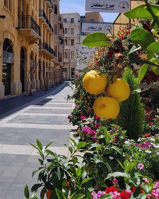 Welcome April with zest & enthusiasm..🍃🍋🐣🍃.. happysunday april... (Beirut Souks)