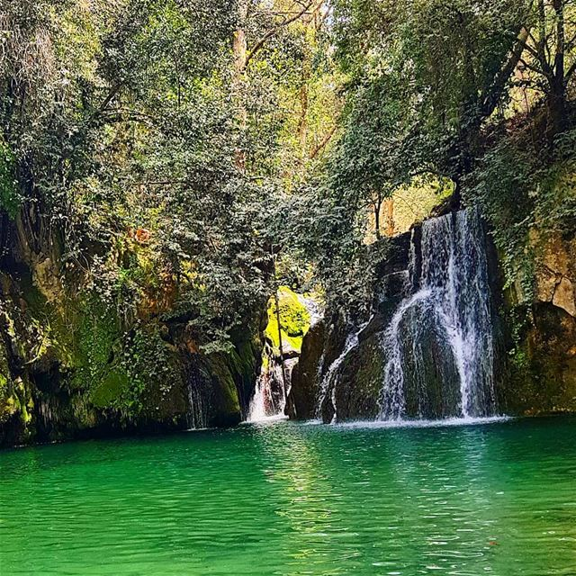 """Water is the mirror of nature""😙🇱🇧 naturelover  naturephotography ... (Chouf)"