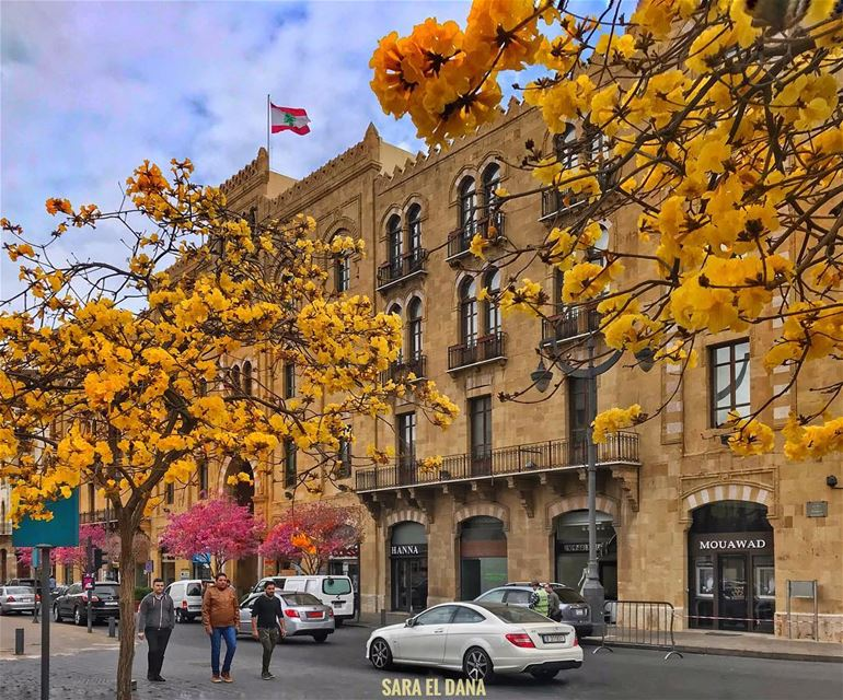 Hello gorgeous Beirut! 🌼 (Downtown Beirut)