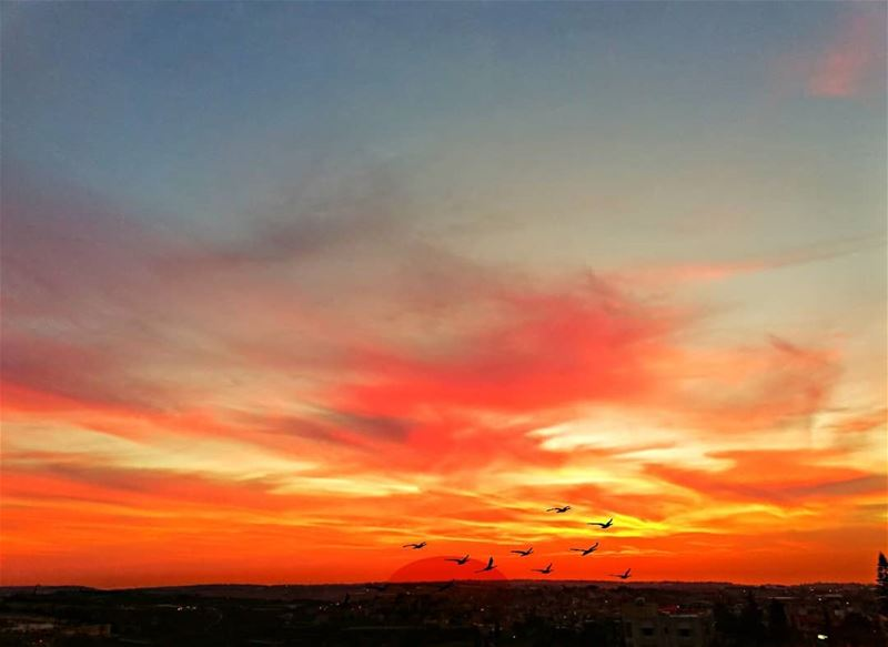 Good evening dear followers with this amazing sunset Photo taken by @place (Ghassâniye, Al Janub, Lebanon)