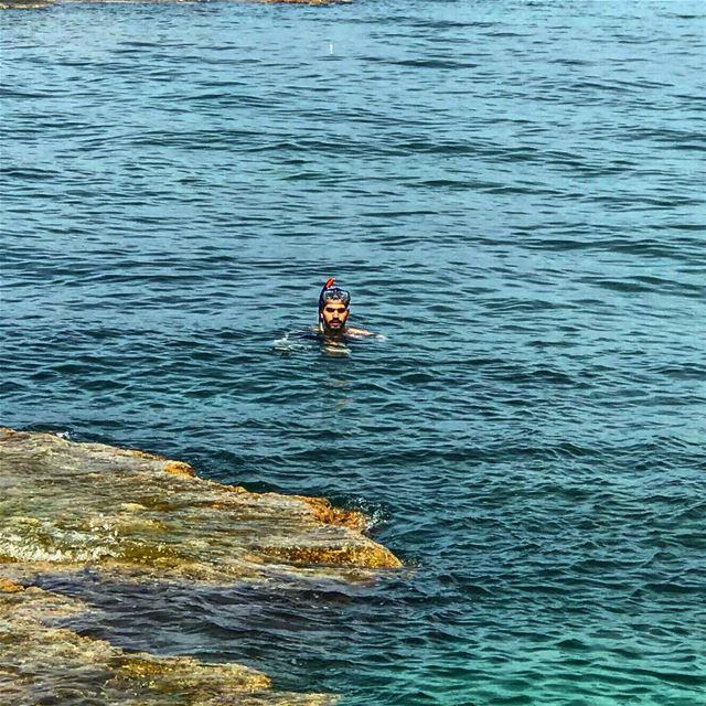 about yesterday diving dive scubadiving scuba snorkeling adventure... (Al Mina', Liban-Nord, Lebanon)