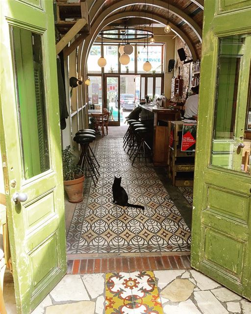 • The Green Door & The Cat •.....  beautifullebanon  livelovebeirut ... (Beirut, Lebanon)