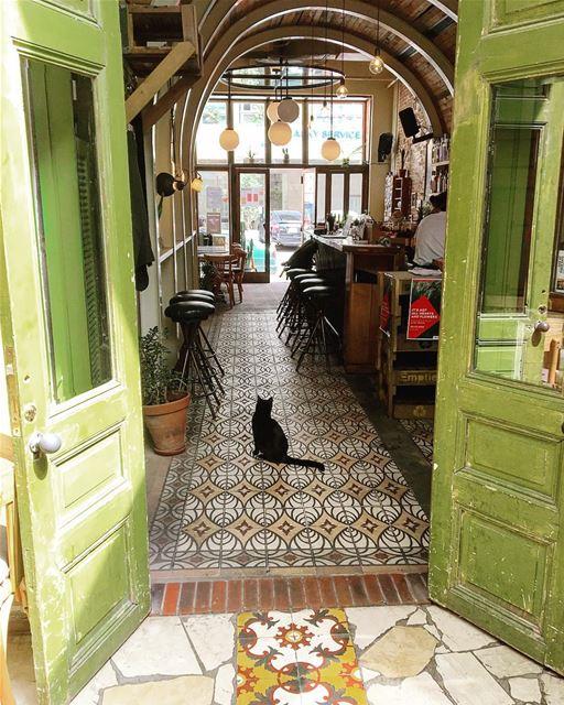 • The Green Door & The Cat •..... beautifullebanon livelovebeirut ... (Beirut, Lebanon)